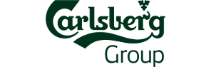 Technical support of the Carlsberg Group IT service management platform in the Eastern Europe region